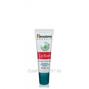 Бальзам для губ, 10гр., Himalaya Herbals, (Хималая Хербалс)